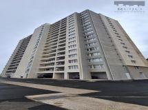 Viña Alto, 40 mt2, 1 dormitori, 1 baño, bodega